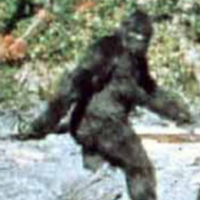kitchen confidential who is bigfoot for Shipping Pass